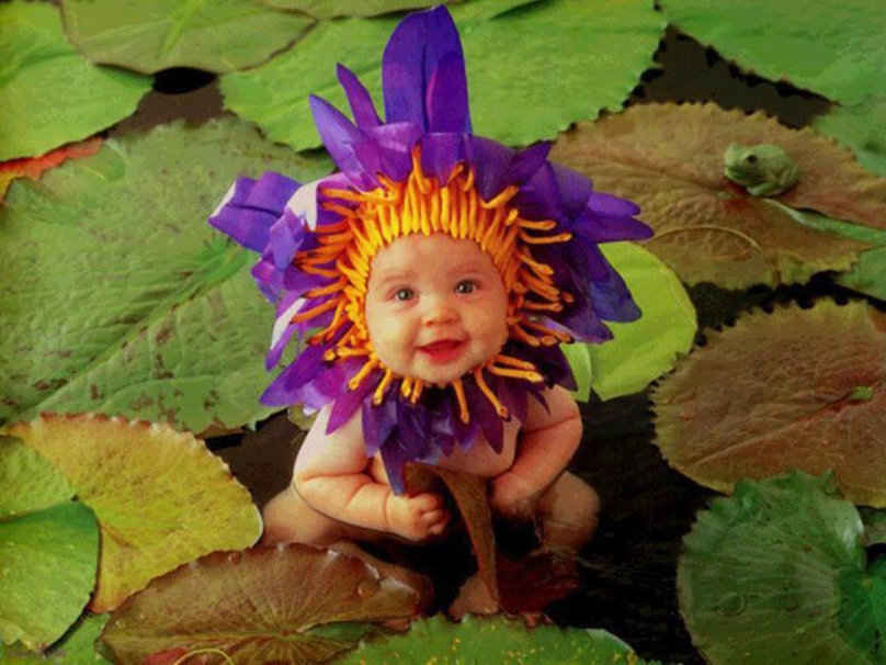 Cute Babies With Flowers Wallpaper 29