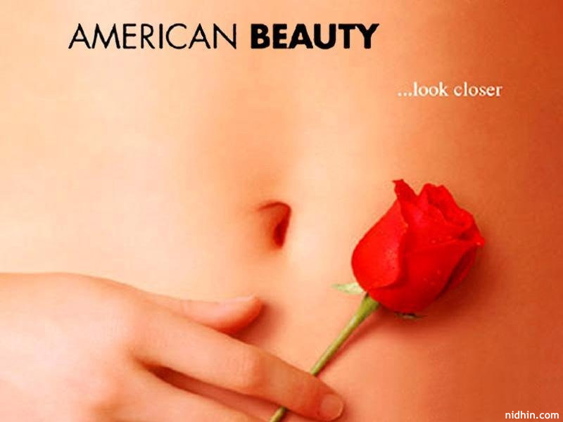 a review of the idea of american beauty The average american will spend one and one-half years of his or her life watching television commercials conventional beauty is her only attribute.