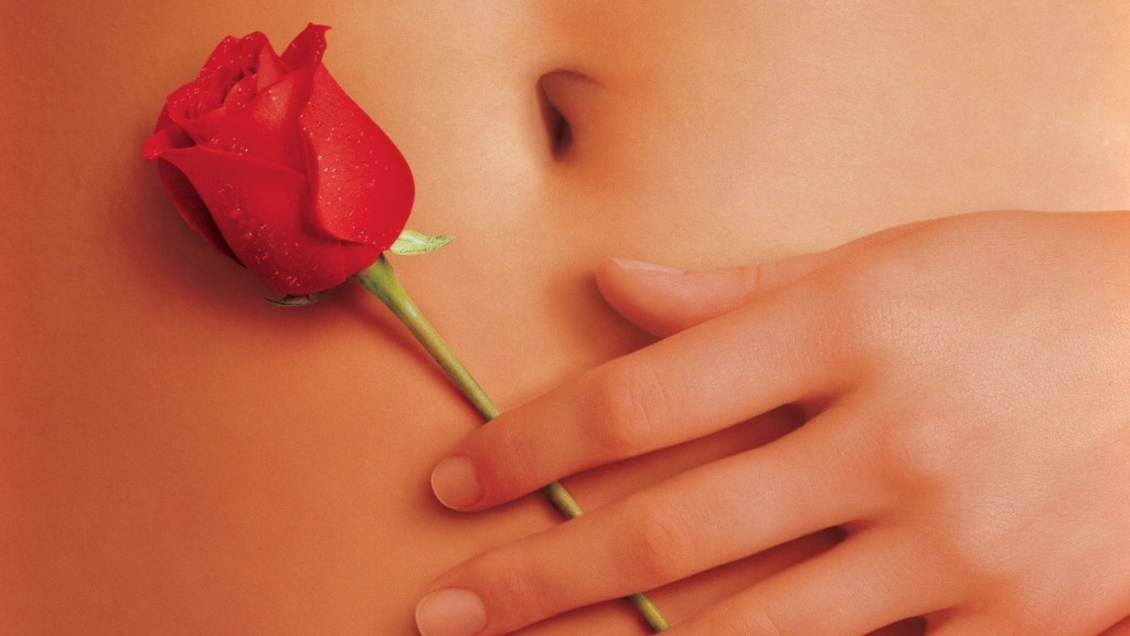 American Beauty Wallpaper 33 1024×576