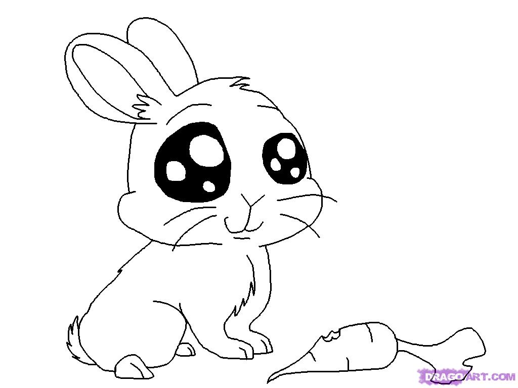 Bunny Drawing 1