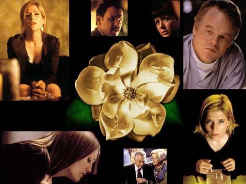 Magnolia Movie Wallpaper 6