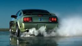 Mustang Burnout 6