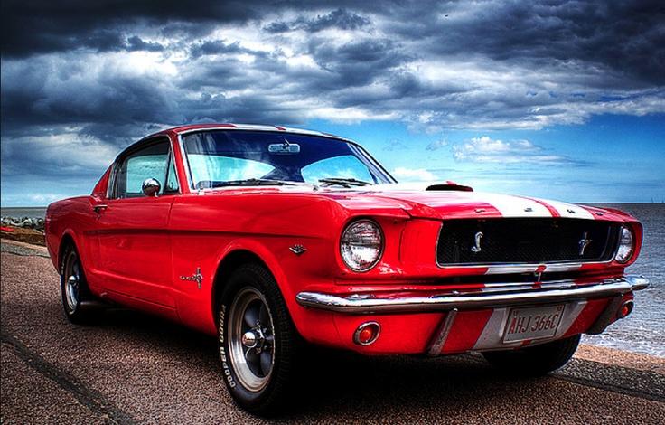 Mustang Cobra 1960 2