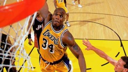 Shaquille Oneal Dunk 21
