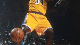 Shaquille Oneal Dunk