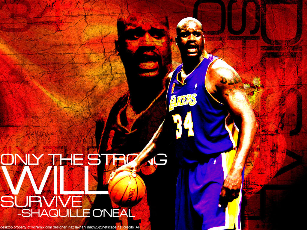 Shaquille Oneal Dunk Wallpaper 27 1024×768