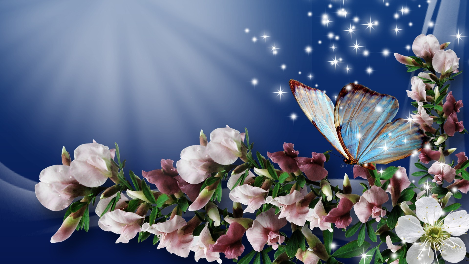 Spring Flowers And Butterflies Wallpaper 27