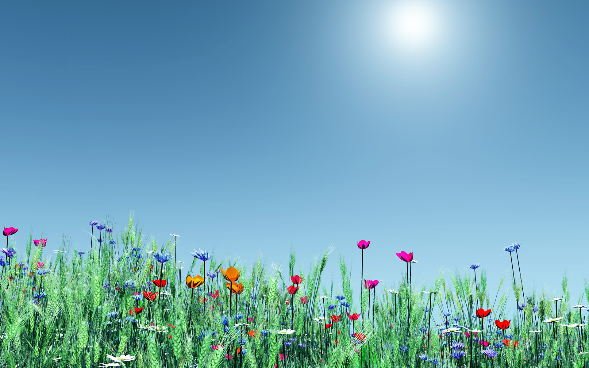 Spring Flowers Wallpaper 15