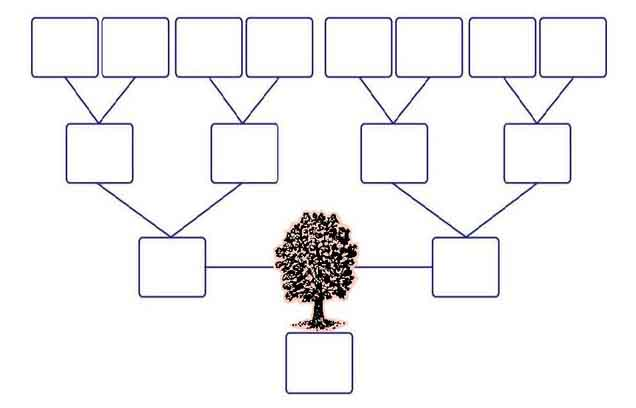 Free Family Tree Template 4 Generations. Pdf Family Tree Template ...