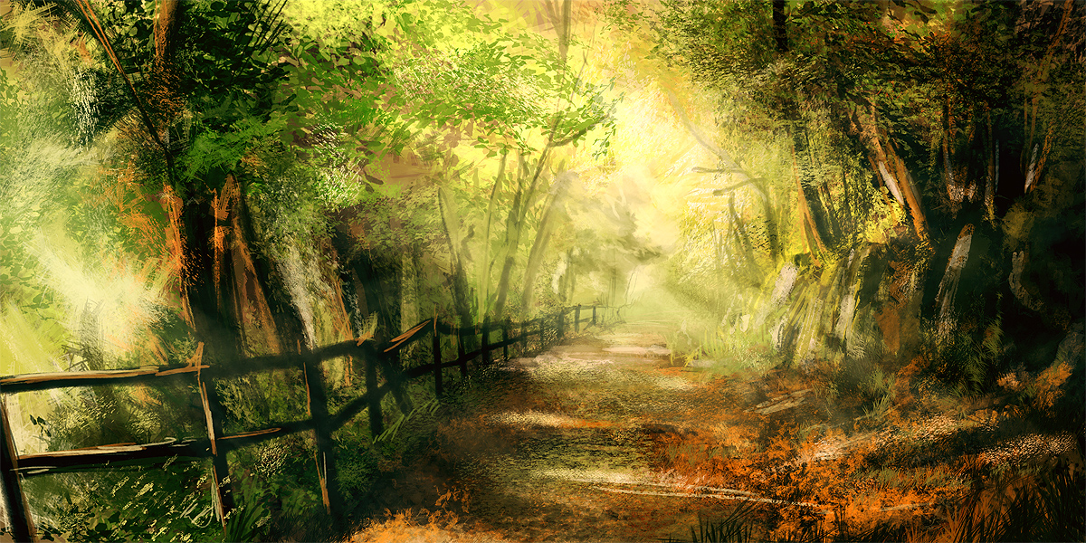 Beautiful Forest Path 3