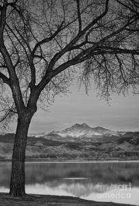 Early Morning Sunrise Black And White 14 203×300