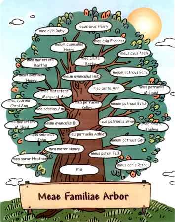 Latin Family Tree Pictures to Pin on Pinterest - PinsDaddy