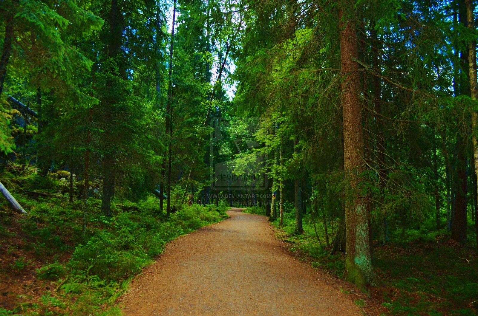 FunMozar – Forest Path