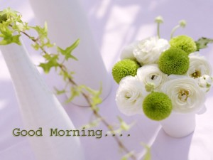 Good Morning Wallpapers With Flowers 3 300×225