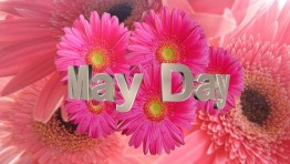 May Day Wallpaper