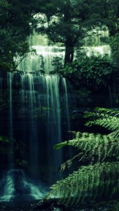 iphone_5_20547_forest_forest_waterfall 169×300