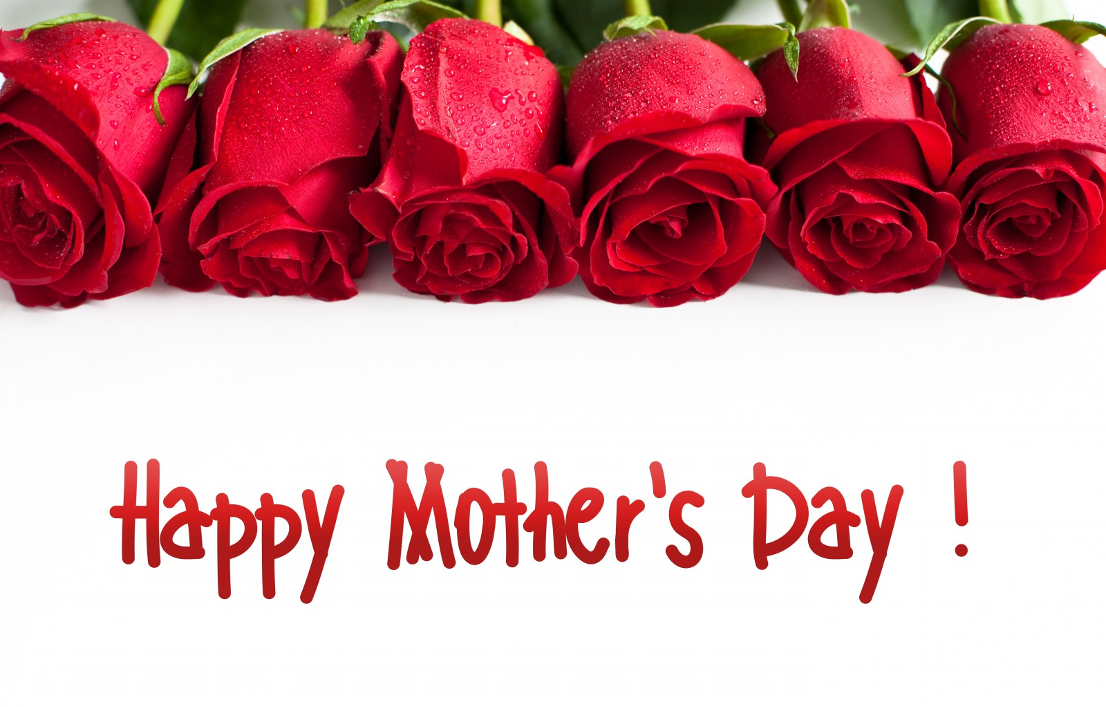 Happy Mothers Day Roses 6