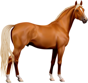 Horse Clipart 28 300×282