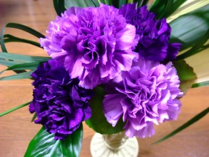 Purple Carnations Wallpaper 5 300×225