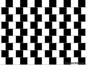 Amazing Illusions Moving 7 300×225