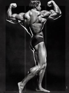 Arnold Schwarzenegger Bodybuilding Back 3 223×300