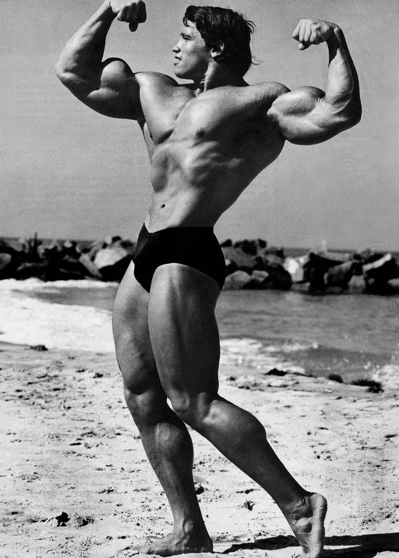 Arnold Schwarzenegger Bodybuilding Pose 2