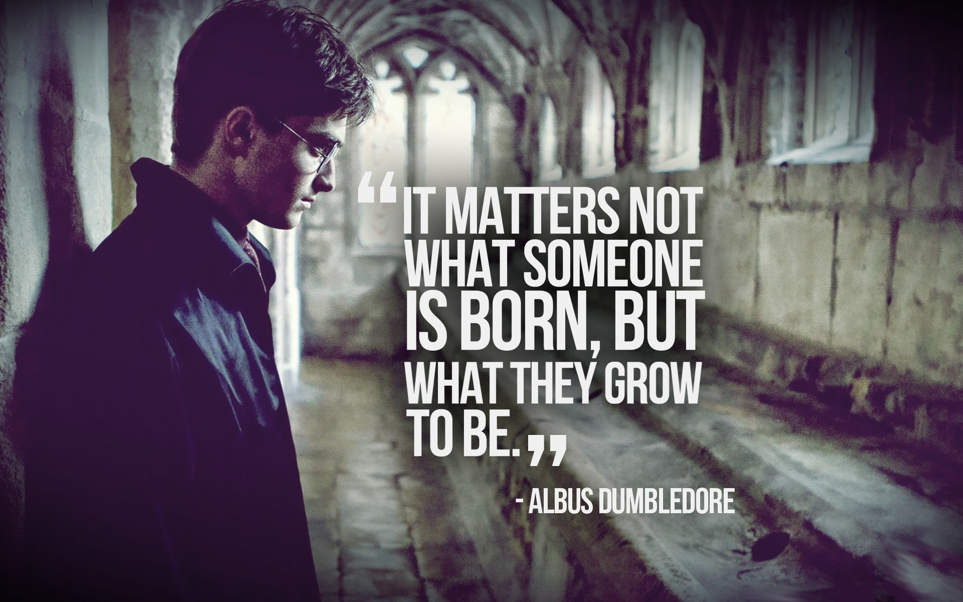 Dumbledore Quotes Wallpaper 17