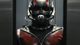 Ant Man 6 262×148