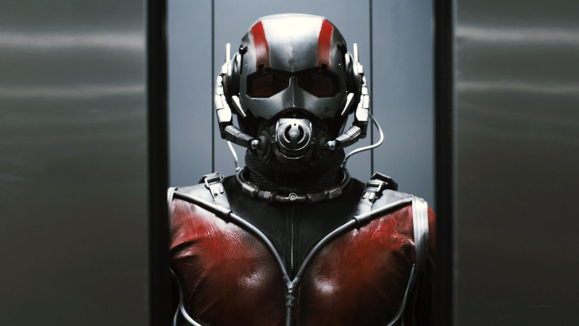 Ant Man Wallpaper 1