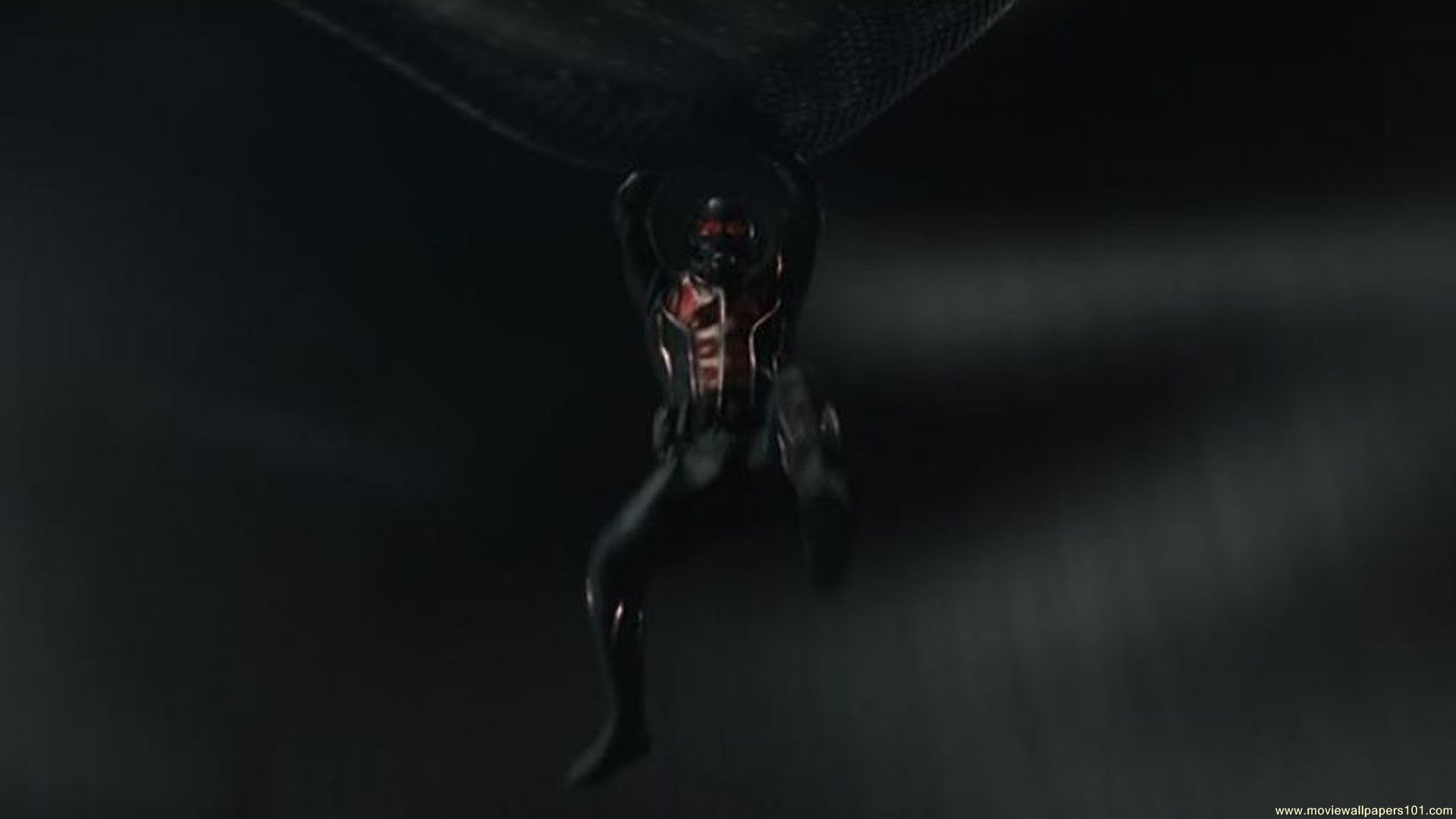 Ant Man Wallpaper 45