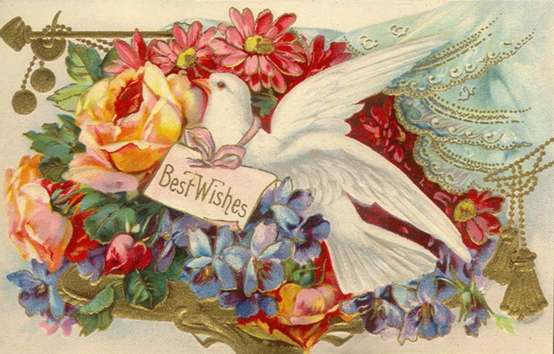 Best Wishes Ash Ketchum Wallpaper Pokémon Wallpaper (18970251 ...