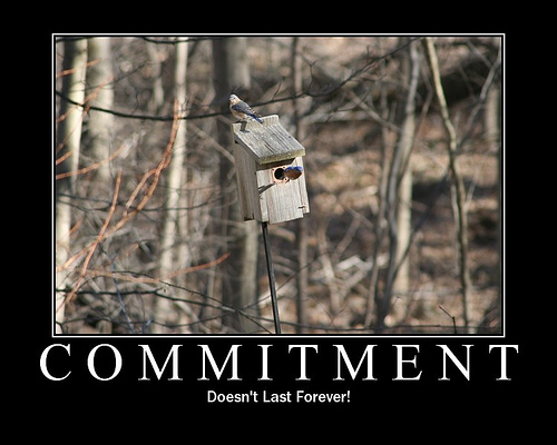 Commitment Poster 17