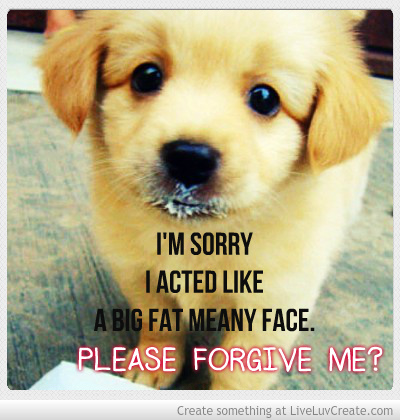 Cute Apology 3