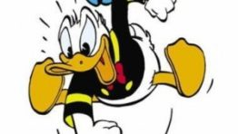 Donald Duck Angry Wallpaper 2 300×300 262×148