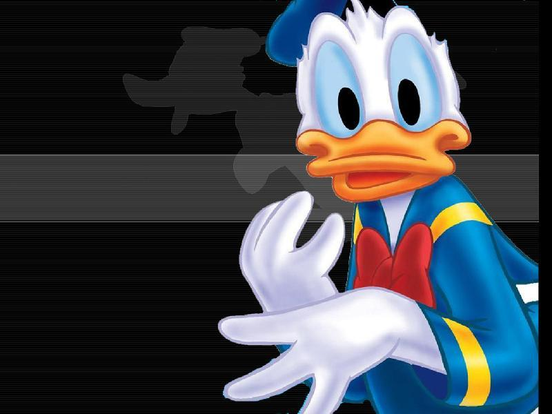 Donald Duck Wallpaper 5