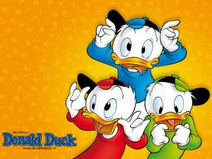 Donald Duck Wallpaper 8 300×225