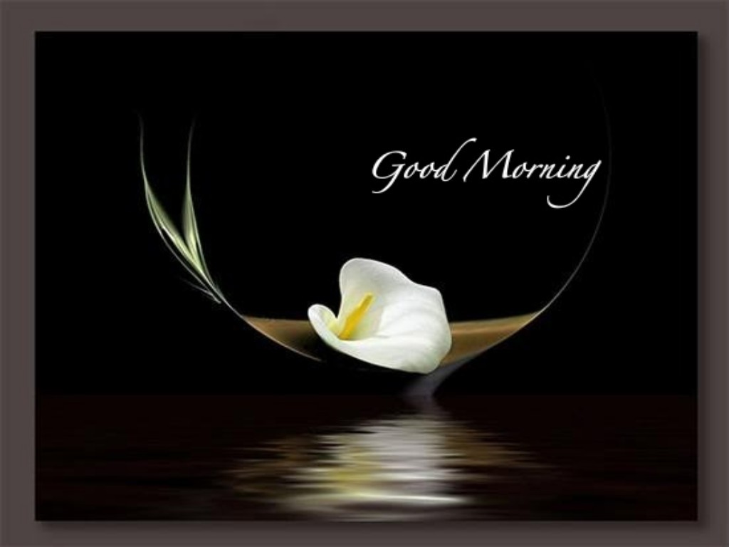 Good Day Images Wallpaper 10