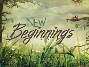 New Life New Beginning Cover Photo 10 300×225