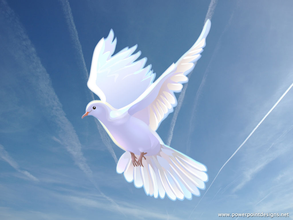 Religious Dove Backgrounds 3