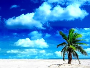 Summer Holiday Wallpaper Desktop 8 300×225