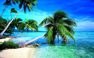 Tropical Holiday Wallpaper 1 300×187