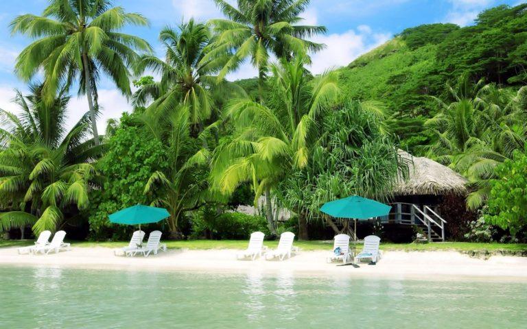 Tropical Holiday Wallpaper 3 768×480