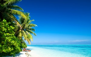 Tropical Holiday Wallpaper 7 300×188