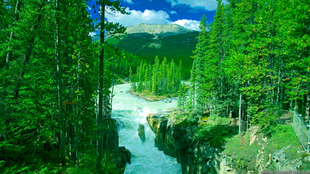 Very Good Nature Wallpapers 6