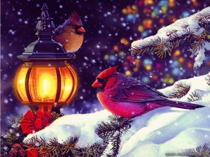 Winter Holiday Wallpaper 5 300×225