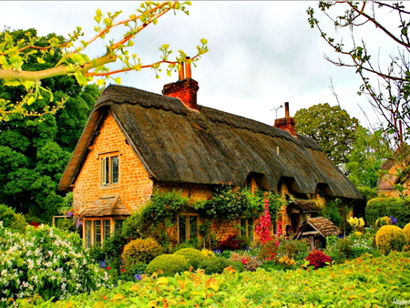 House Beautiful Wallpaper beautiful nature house wallpaper 4 | the art mad