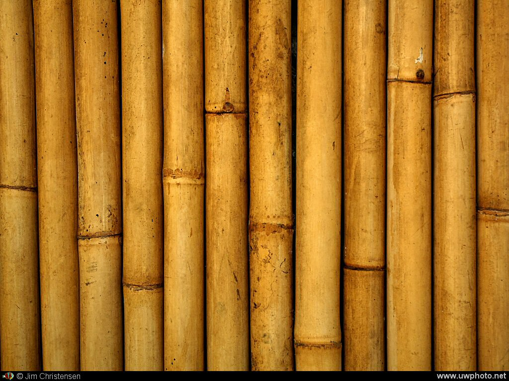 Brown Bamboo Wallpaper 5