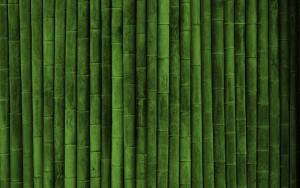Chinese Bamboo Wallpaper 2 300×188