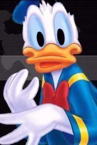 Donald Duck Wallpaper Iphone 26 200×300