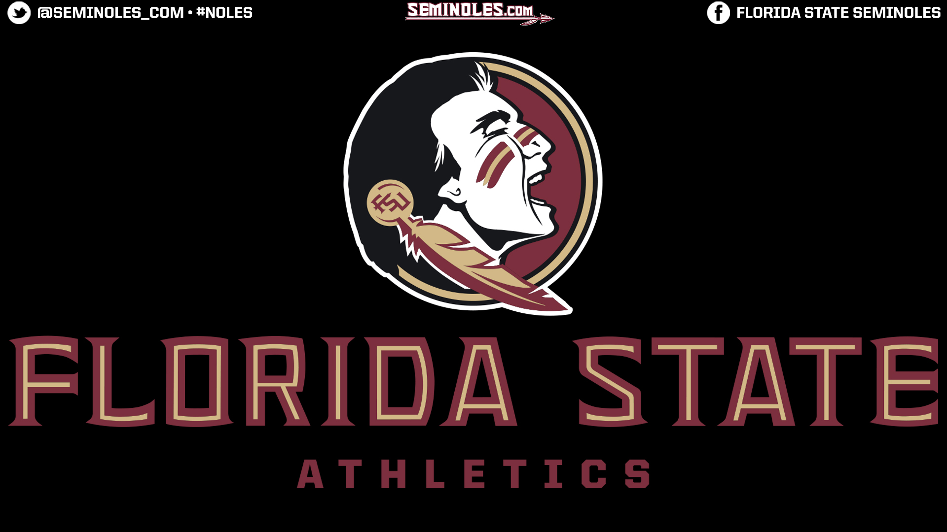 Florida State Football Wallpaper 3